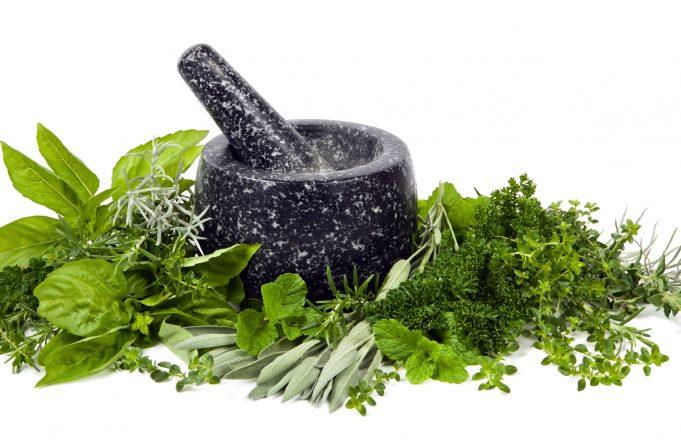 10 ljekovitih biljaka koje možete (i trebate) uzgajati u svom domu