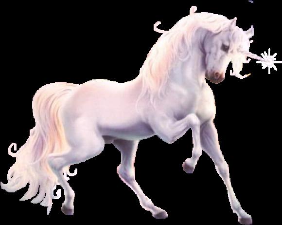 Ado-UnicornJednorog_ivotinje_full_21_108616