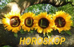 HOROSKOP ZA JULI 2016