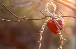 Venera u Raku Vrijeme zaljubljenosti