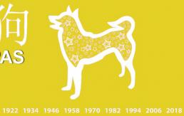 Pripremite se! Dolazi godina žutog zemljanog psa – Evo u čemu će svakome od nas donijeti sreću!