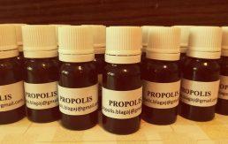 Propolis jača imunološki sistem